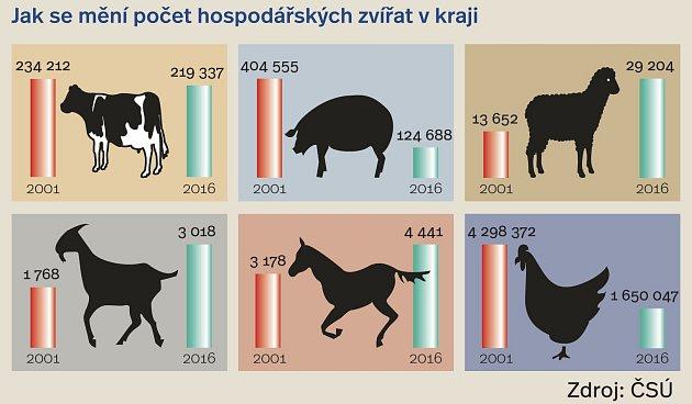 České maso je na pultech stále vzácnější.