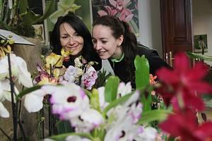 Orchideje v Jihočeském muzeu