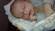 Janička Novotná se narodila 20. 12. 2016 v 11.01 h. Vážila 3,44 kg a měřila 50 cm. Je prvním miminkem manželů Jany a Martina Novotných z Českých Budějovic.