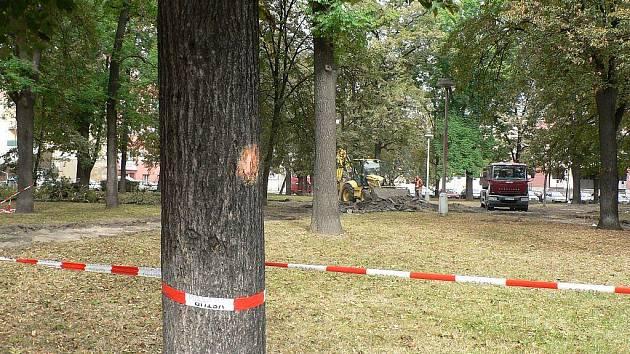 Palackého náměstí v Českých Budějovicích čeká proměna. Obnovení zeleně nebo laviček a chodníků.