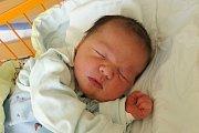 O dva roky staršího brášku Honzíka má novorozený Vít Cebe, syn Moniky Mlsnové z Třeboně. Na svět přišel 28. 3. 2017 v 8.32 h, vážil 3,92 kg.