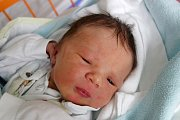 Elena Ferenčíková se narodila 13. 3. 2018 v 5.25 h. V českobudějovické nemocnici ji přivedla na svět maminka Veronika Chadtová. Elena Vážila 3,01 kg. Žít bude v Ledenicích.