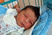 Richard Ladislav Marek, syn Ireny Bledé, vyroste v Českých Budějovicích. Narodil se 13. 3. 2017 ve 13.40 h, vážil 3,70 kg. Doma jej uvítají sourozenci  Jessica ( 5 let) a  Justin (2 roky).