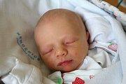 Marina Kipson je šťastnou maminkou novorozené Dory Šálkové. Na svět ji přivedla 6. 11. 2018 v 16.17 h., vážila 2,90 kg. Poznávat svět bude v Českých Budějovicích.