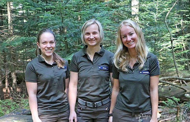 Můžete je potkávat vBavorském lese.