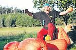 """Svou sílu musel na potěžkání tykve Jiřiny Holbové ze Samoty Borovka použít i legendární Asterix . """"Potřeboval ovšem i kouzelný nápoj,"""" uvedla úspěšná zahradnice. Dýně váží 59,7 kg, má 98 cm a obvod 176 cm."""