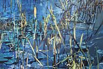 Markéta Zlesáková (35), která své obrazy vystavuje do 15. dubna ve Wortnerově domě AJG v Českých Budějovicích, se hodně inspiruje v přírodě.