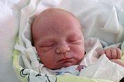 V Českých Budějovicích bude vyrůstat Jan Prokop, jehož maminka Petra Cibulková porodila 19. 7. 2017 v 11.18 h. Novorozenec vážil 3,52 kilogramu.