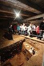 Dny evropského dědictví v Českých Budějovicích. Pro návštěvníky byla zpřístupněna Solnice na Piaristickém náměstí, kde v současné době probíhá archeologický výzkum.