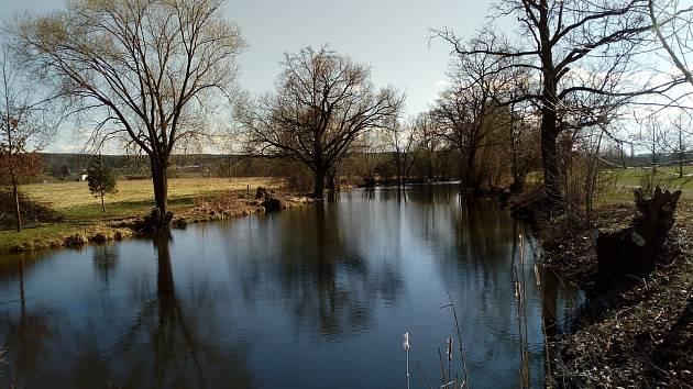 Příjemná procházka kolem řeky v Plané