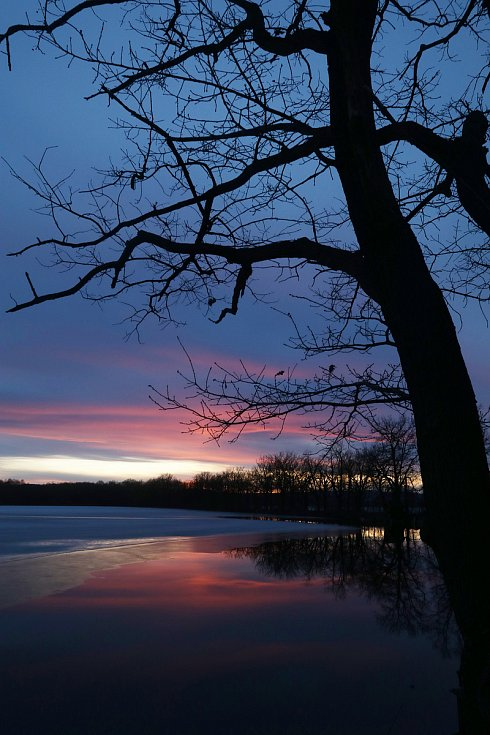 Západ slunce nad Starým vrbenským rybníkem v Českých Budějovicích.