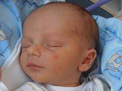 David Havlík se narodil v 8 hodin a 7 minut v pondělí 27.8.2012 s porodní váhou 3,22 kg. Doma v Bukovci u Kamenného Újezda už se na něj moc těší dva sourozenci -čtrnáctiletá Tereza a šestiletý Kamil. Šťastnými rodiči dětí jsou David a Marcela Havlíkovi.