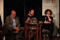 V Horké vaně v úterý 4. února debatovali o kulturních prostorech, převážně o potřebách Jihočeského divadla a o chystané stavbě nové divadelní budovy.