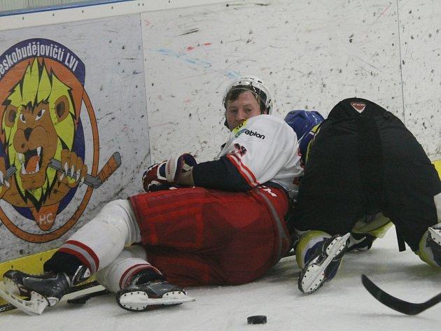 Forvard Jiří Hanzal (vlevo) je oporou hokejistů David servisu.