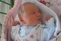 V Olešnici nedaleko Trhových Svinů prožije dětství  Nikol Nestarcová. Na svět přišla s porodní váhou rovné 3 kg v neděli 25.1.2015 ve 12 hodin a 46 minut. Rodiči prvorozené holčičky jsou Petr Nestarec a Lenka Procházková.