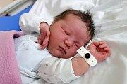 Tereza Berenika Dubská je dcerou Pavly Matějkové z Českých Budějovic. Narodila se 28. 3. 2017 v 11.08 h,  vážila 3,66 kg . Má už šestiletou sestřičku Stellu Johanu.