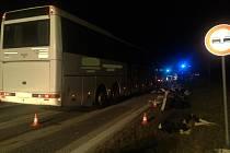 Na silnici mezi Kamenným Újezdem a Velešínem se v sobotu večer srazil autobus se stádem krav.