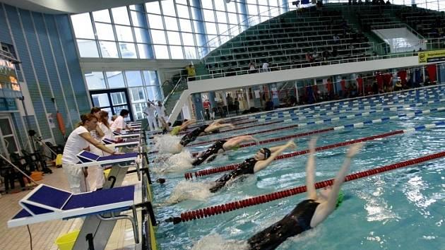 ODSTARTOVÁNO. Velké ceny Českých Budějovic v plavání se zúčastnila česká špička a přijeli i výborní závodníci z Maďarska. V konkurenci 346 plavců se neztratili ani domácí závodníci.
