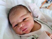 Do Nedabyle odjela z porodnice Tereza Vávrová. Maminka Aneta Pavková ji přivedla na svět 20. 2. 2018 ve 3.57 h. Malá Terezka po porodu vážila 3,47 kg.