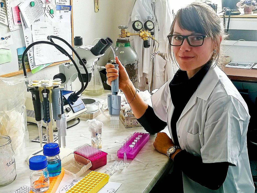 Andrea Bednářová zkoumá stresové hormony u hmyzu a jejich úlohu při zvládání oxidačního stresu.