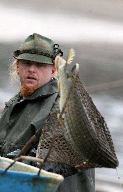 I když je sice do Vánoc ještě daleko, přípravy na podzimní výlovy u rybářů už vrcholí.