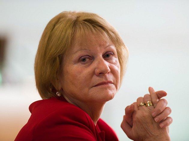 Hlavně vychovávat má kultura dle Vítězslavy Baborové z KSČM (58), nové krajské radní pro kulturu a školství. Sama má ráda otáčivé hlediště či Prácheňáček.