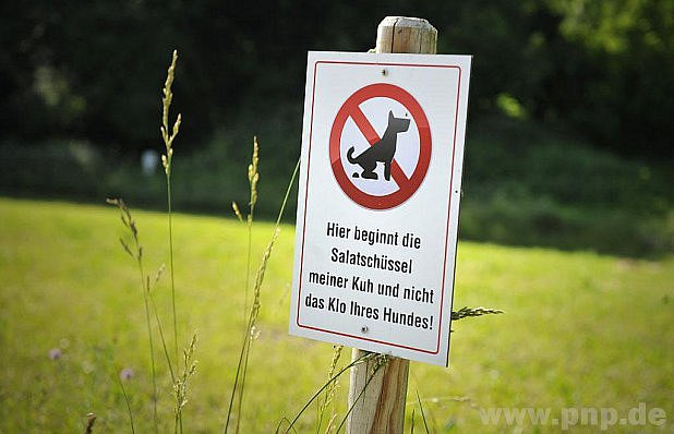 Pejskaři, pozor!