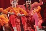 Celkem 25 choreografií předvedli tanečnice a tanečníci na krajské přehlídce scénického tance, která se o víkendu konala v českobudějovickém Metropolu. V kategorii dětí viděli diváci 14 choreografií, v kategorii mládeže a dospělých potom 11 choreografií.