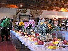 Výstava chryzantém v tvrzi Žumberk.