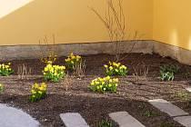 Zahrada, ilustrační fotografie