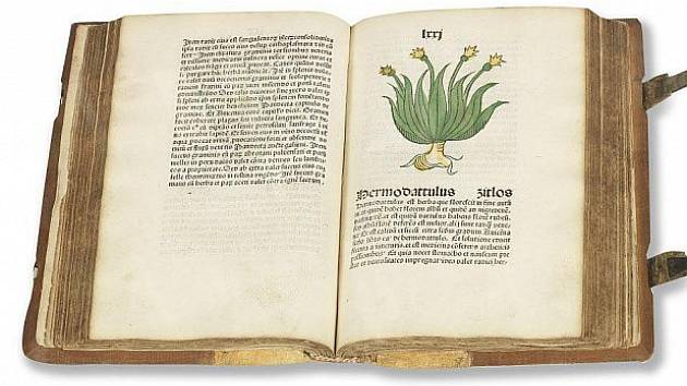 Poklad z roku 1485.