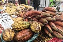 Africké ovoce jste mohli pořídit v IGY.