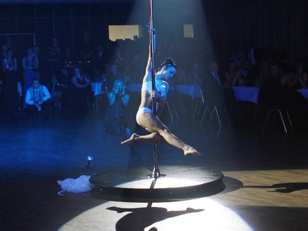 Tanečnice Lucie Šimková si musela narychlo půjčit jinou stage (tj. tyč s podstavcem), aby vůbec mohla vystupovat. Na snímku je zachycena při své show na Velkém mediálním plesu.