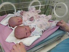 Natálka Znojová a Nikolka Znojová se narodily v pátek 28.12.2012 v 9.12 a 9.13 hodin v českobudějovické porodnici. Vážily 2,9 kg a 2,5 kg a měřily 49 a 48 cm.