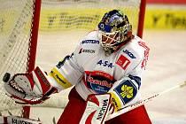 22. kolo hokejové O2 ELH mezi celky HC Mountfield České Budějovice a BK Mladá Boleslav. Roman Turek