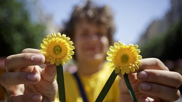 Na podporu boje proti zákeřné nemoci pořádá každý rok Liga proti rakovině veřejnou sbírku. Jejím symbolem jsou kvítky měsíčku lékařského.