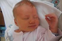 Dvouletá Adélka už doma v Českých Budějovicích netrpělivě vyhlíží příjezd sestřičky Natálie Malinové. Ta se narodila v pátek 6. září 2013 v 9 hodin a 30 minut. Porodní váha byla 2,90 kilogramu.