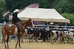 V kempu Poslední štace v Boršově nad Vltavou se v sobotu uskutečnilo Mistrovství České republiky v rodeu.