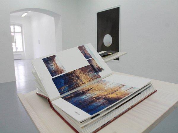 Sto procent požadované sumy dostane zdotací ministerstva kultury Dům umění vČeských Budějovicích. Snímek zaktuální výstavy fotografa Viktora Kopasze.
