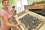 Zdeňka Břečková je jednou z dam, které jsou pro Borůvkobraní nepostradatelné. Ani věk, který došplhal k sedmdesátce,  jí nebrání, aby společně s ostatními napekla 150 plechů borůvkového koláče.