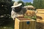 Včelař Sergej Vlačiha při práci.