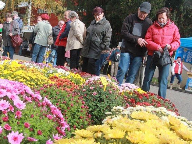 Výstava Hobby podzim. Ilustrační foto.