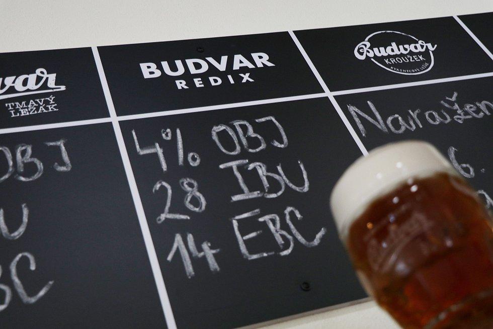 Nové pivo z českobudějovického Budvaru se jmenuje Redix. Začalo se čepovat v Masných krámech.