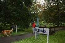 Park Stromovka v Českých Budějovicích.