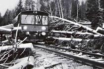 Kniha Svět šumavských železnic připomíná první lokálky, zajímavé vechtry, rašelinového mužíčka, zaniklé tratě, bufety i přepravu cirkusů. Na snímku motorák mezi Zbytinami a Chroboly na trase plné stromů popadaných po vichřici.