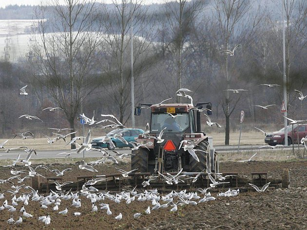 Jarní práce na polích. Ilustrační foto.