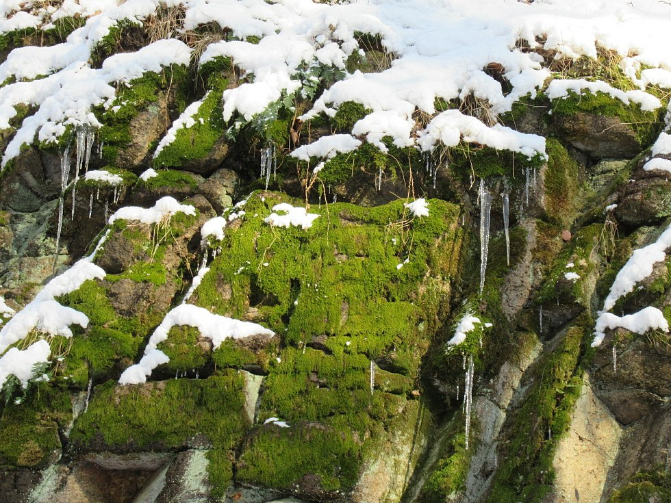 Jaro klepe na vrátka, i když se na některých místech v kraji stále drží sníh.