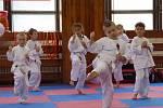 Malí karatisti zaplnili o víkendu tělocvičnu Základní školy Emy Destinové. Na konci dubna je totiž čekají zkoušky na vyšší pásky.