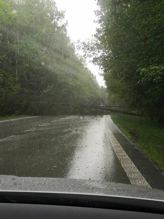 Spadlý strom na silnici z Jarošova nad Nežárkou na Strmilov.