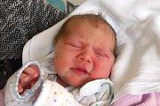 Linda Hedvika Huličková se mamince Lucii Huličkové narodila 29. 1. 2019 v 11.09 h. Její porodní váha byla 3,20 kg. Poznávat svět bude v Trhových Svinech. Foto: Ilona Lonsmínová